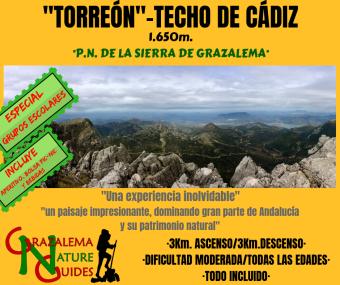 TORREÓN GE